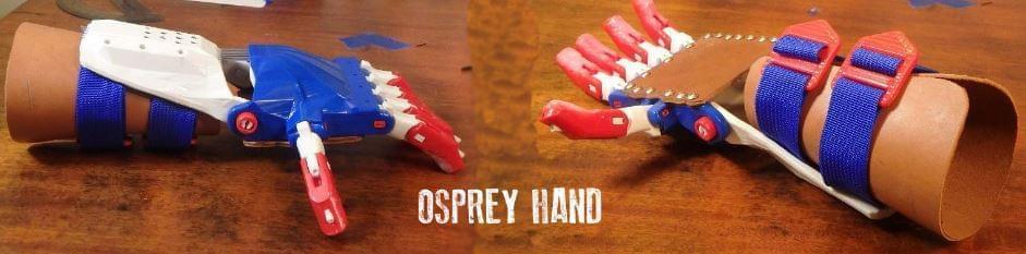 cánh tay osprey