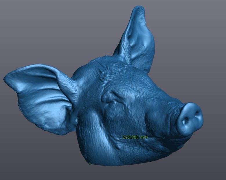 scan 3d thủ lợn 2