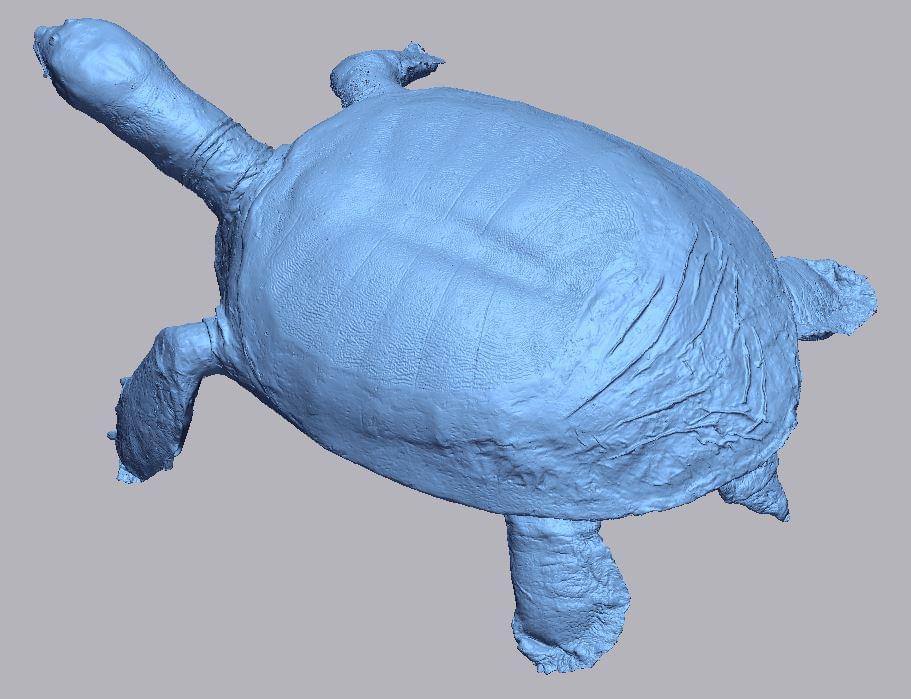 scan 3d động vật hoang dã