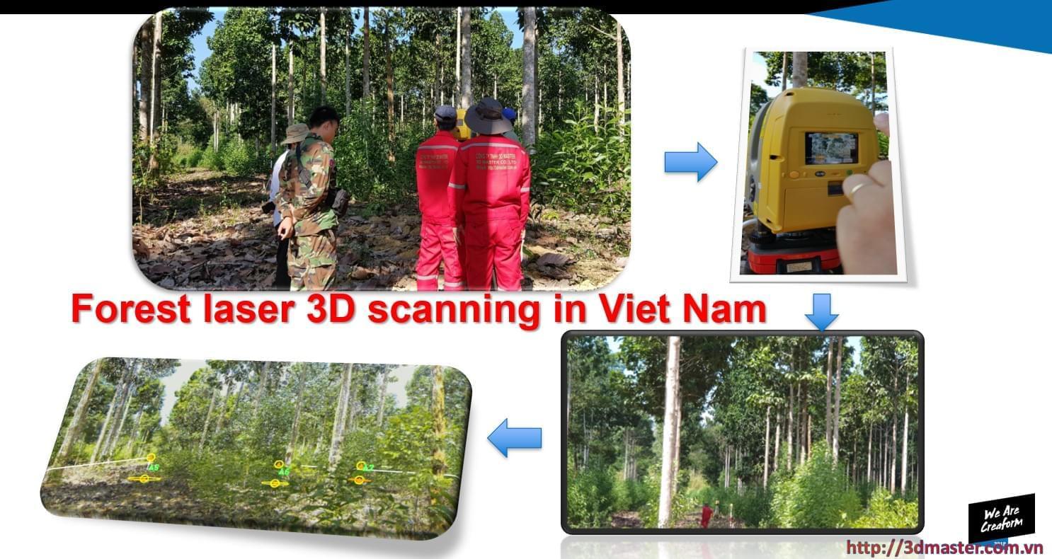 scan 3d rừng việt nam