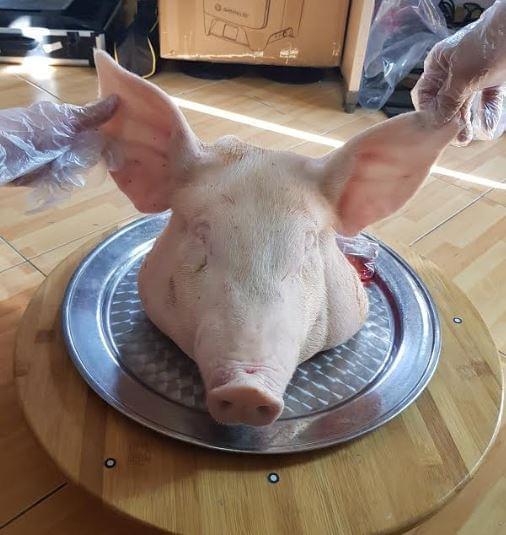 scan 3d thủ lợn 1